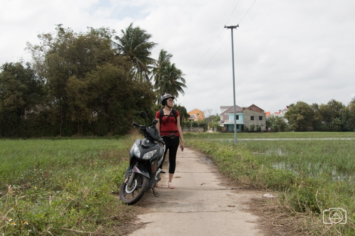 viet2016_scooter